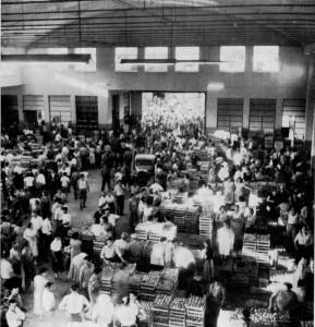 Il mercato di piazza Terzi