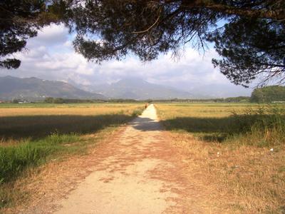La tenuta di Marinella